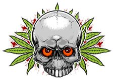 Free Skull And Weed Stock Photo - 36576330