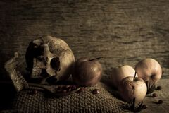 Skull with apples Stock Photos