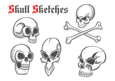 Skull artistic pencil sketch icons Stock Photography