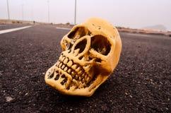 Skull on the Asphalt Street Royalty Free Stock Images