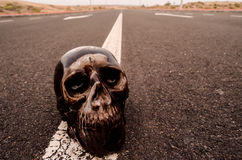 Skull on the Asphalt Street Royalty Free Stock Photography