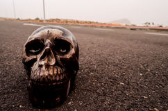 Skull on the Asphalt Street Stock Photo