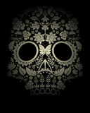 Skull backdrop Royalty Free Stock Images