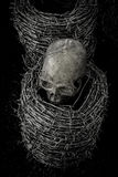 Skull and barb wire Royalty Free Stock Image