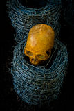 Skull and barb wire Stock Image