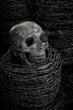 Skull and barb wire Royalty Free Stock Photo