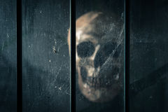 Skull behind the grille Royalty Free Stock Photo