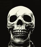 Skull. On black background Royalty Free Stock Photos