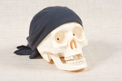 The skull with black bandana. On a canvas background Royalty Free Stock Image