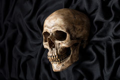 Skull on black fabric Royalty Free Stock Photos