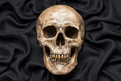Skull on black fabric Royalty Free Stock Images