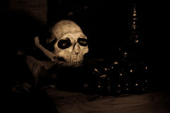 skull and black grape Royalty Free Stock Photography