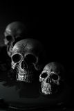 Skull and blood Royalty Free Stock Images