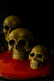 Skull and blood Stock Photos