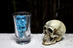 Skull with Blue Ice in shot glass. -still life Royalty Free Stock Image