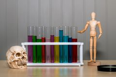 Skull bone ,color of test tube,human wood model and magnifying. Glass on table.Copy space and science concept royalty free stock photo