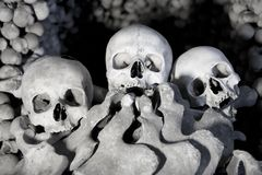 Skull and bones Royalty Free Stock Image