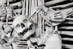 Skull and bones Royalty Free Stock Images