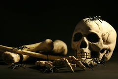Skull and bones. Halloween skull and bones on black background stock photography