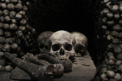 Skull and Bones. Beetween a pile of bones stock photos