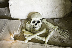 Skull and bones. In the cemetery, fear and halloween stock photography