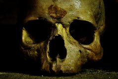 Skull. The bones crypt in UK Stock Photography