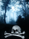 Skull and bones in the dark foggy forest Stock Photo