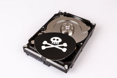 Skull with bones and hard drive from computer, cyber security concept. Virus, malware, ransomware royalty free stock photos
