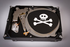 Skull with bones and hard drive from computer, cyber security concept Stock Photography