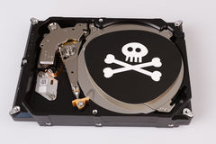 Skull with bones and hard drive from computer, cyber security concept Royalty Free Stock Image