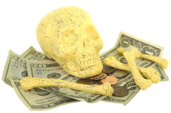 Skull and Bones with Money Stock Image