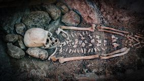 Skeleton of a primitive man inside a cave. Skull and bones of a primitive man inside a cave Royalty Free Stock Image