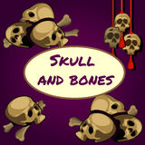 Skull and bones on a purple background Royalty Free Stock Image