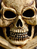 Skull & Bones. Scary fake skull and bones constructed for Halloween royalty free stock photography