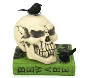 Skull on Book with Blackbirds Stock Photography