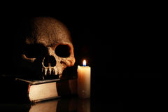Skull On Book Royalty Free Stock Photography