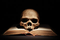 Skull On Book Stock Photo