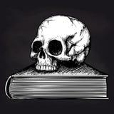 Skull on book sketch on blackboard Stock Photo