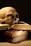 Skull On Books Stock Image