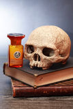 Skull On Books Royalty Free Stock Images