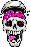 Skull with brain out Royalty Free Stock Image