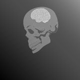 Skull and brain VECTOR Stock Images