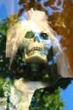 skull bride Stock Photography