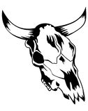 Skull bull Stock Photos