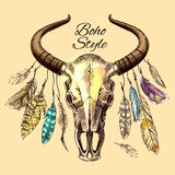 The skull of a bull Royalty Free Stock Images