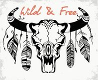Skull of a bull, Bison skull decorated with feathers. Boho style. Skull of a bull, Bison skull decorated with feathers. Hand drawn graphic. Wild and free. an vector illustration