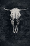 The skull of a bull with horns and tree Royalty Free Stock Images