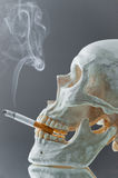Skull with burning cigarette Stock Image