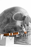 Skull with burning cigarette Stock Photos