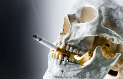 Skull with burning cigarette Royalty Free Stock Image